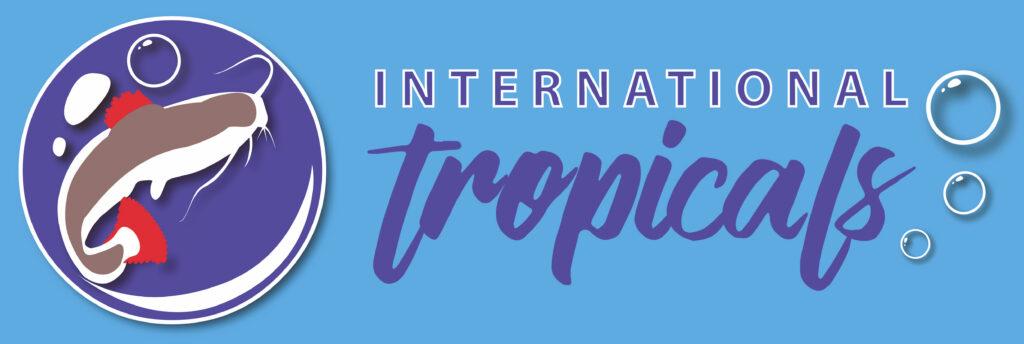 Beccles Business Hub - International Tropicals logo v2