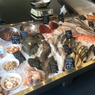 Beccles Business Hub - Beccles Fish 3